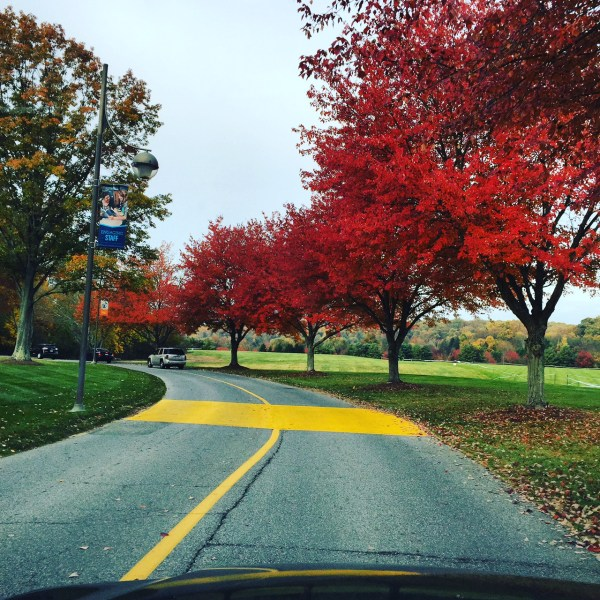 The approach to campus | Stevenson University | October 27, 2015