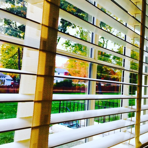 Looking outside our family room window | October 25, 2015