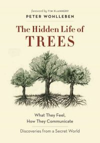 The cover of Wohlleben's The Hidden Life of Trees