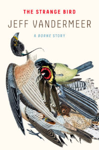 The cover of Vandermeer's The Strange Bird