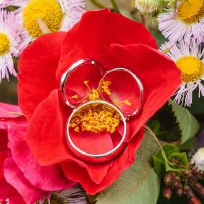 Norfolk wedding photographer – wedding rings
