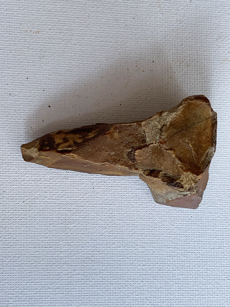 Mesolithic Borer