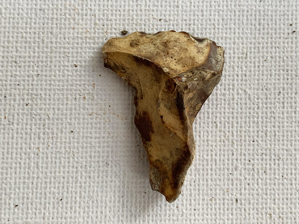 Neolithic / Mesolithic Borer