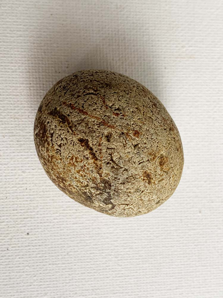 Small Neolithic Hammer-Stone