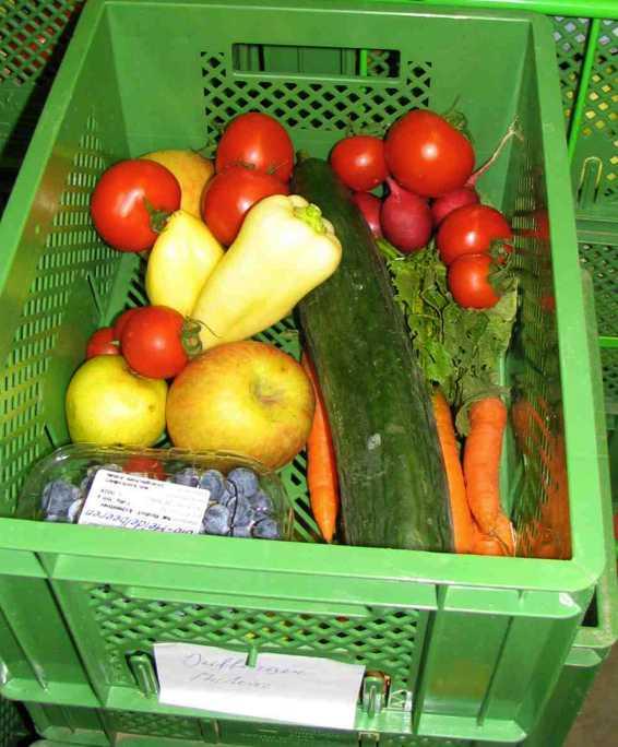 veg food basket