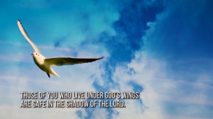 link to video Under God's Wings