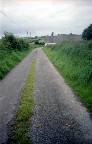 Frogger: Ireland Edition (1999)