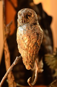 wood owl, sculpture,bronze wood owl,Stephen Rautenbach