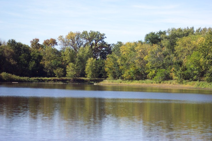 Wetland Preserves
