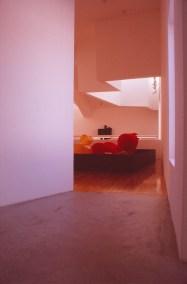 Vitra Design Museum by Frank Gehry 65_Stephen Varady Photo ©