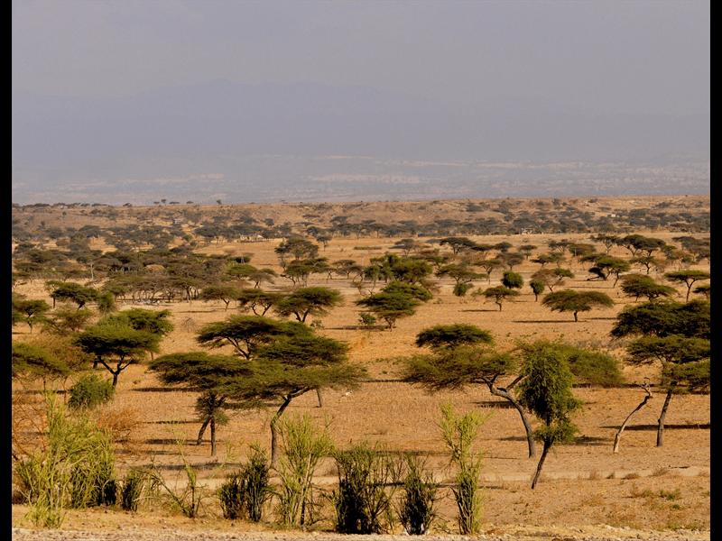 Ethiopia Mission Trip 2014_Page_04