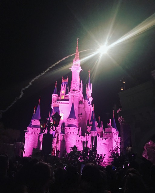 Travel Matters: Walt Disney World