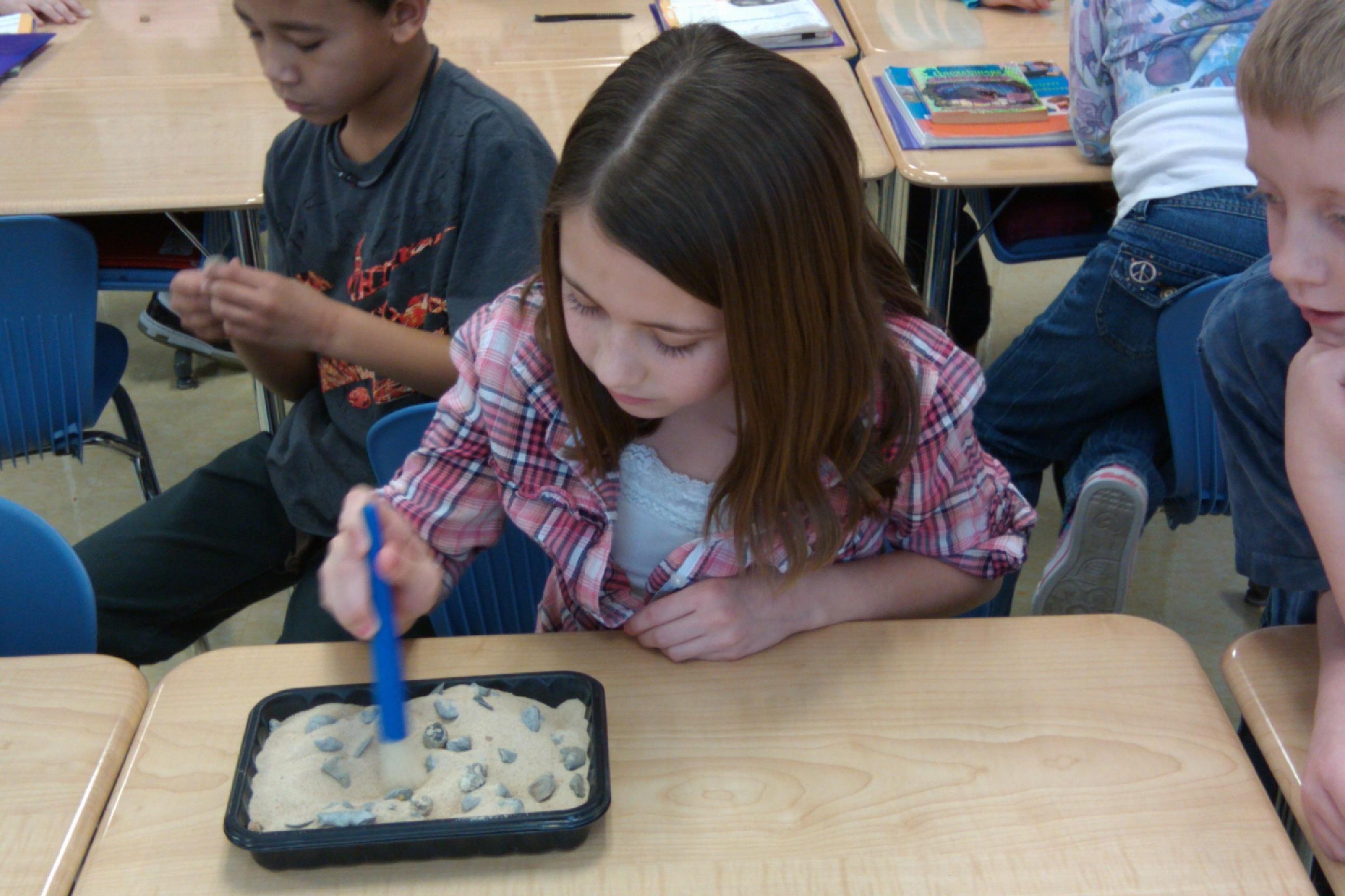3rd Grade Fossil Dig