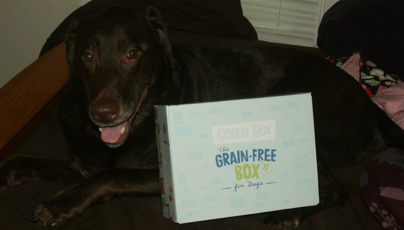 Chewy Influencer: Grain Free Goody Box for Dogs