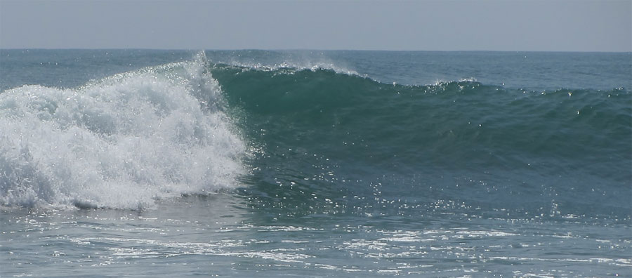 searching for a left next to a longboard wave