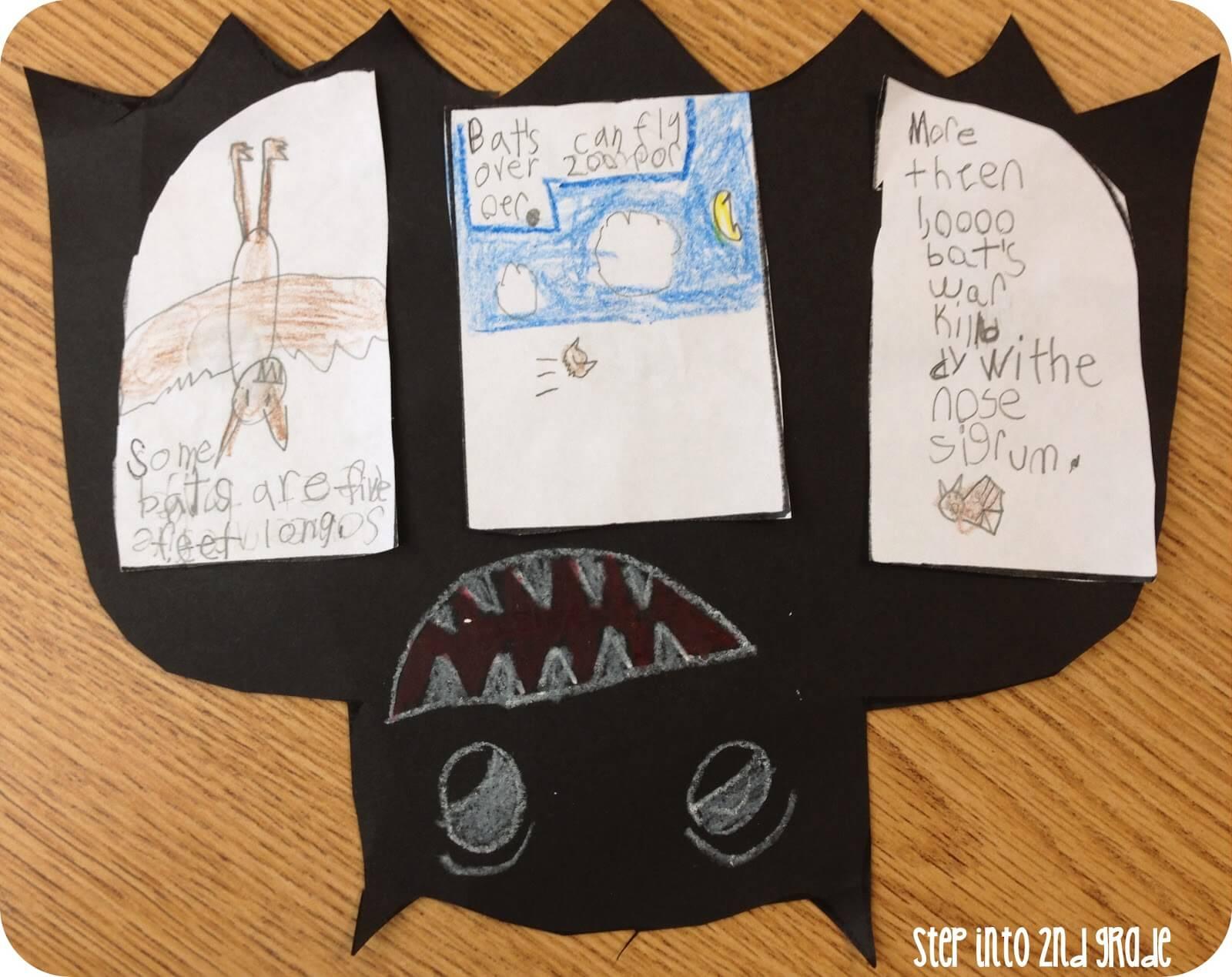 Bats Bats And More Bats