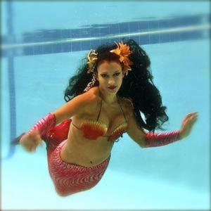 Mermaid-6824010.91