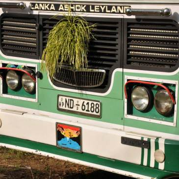 How to travel by bus in Sri Lanka… the challenge!