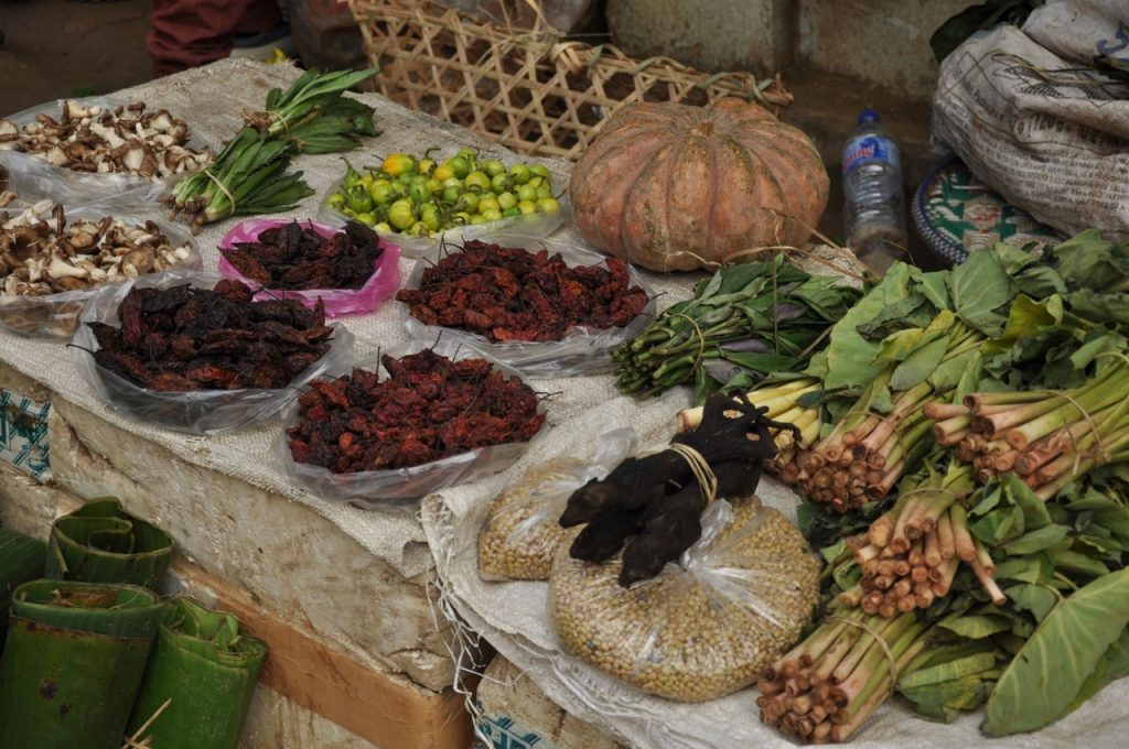 Kohima, in Nagaland, definitely stood out by the markets, where the exotic and diverse food supply reflects the originality of Nagaland cuisine that includes a lot of meat, eggs, dried fish, eels, snails, worms, mice, frogs... and wasp larvae, still sold in the hive.