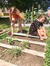 Gardening Summer Program