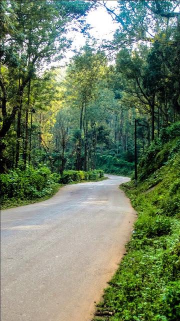 On the Way to Mullayyanagiri