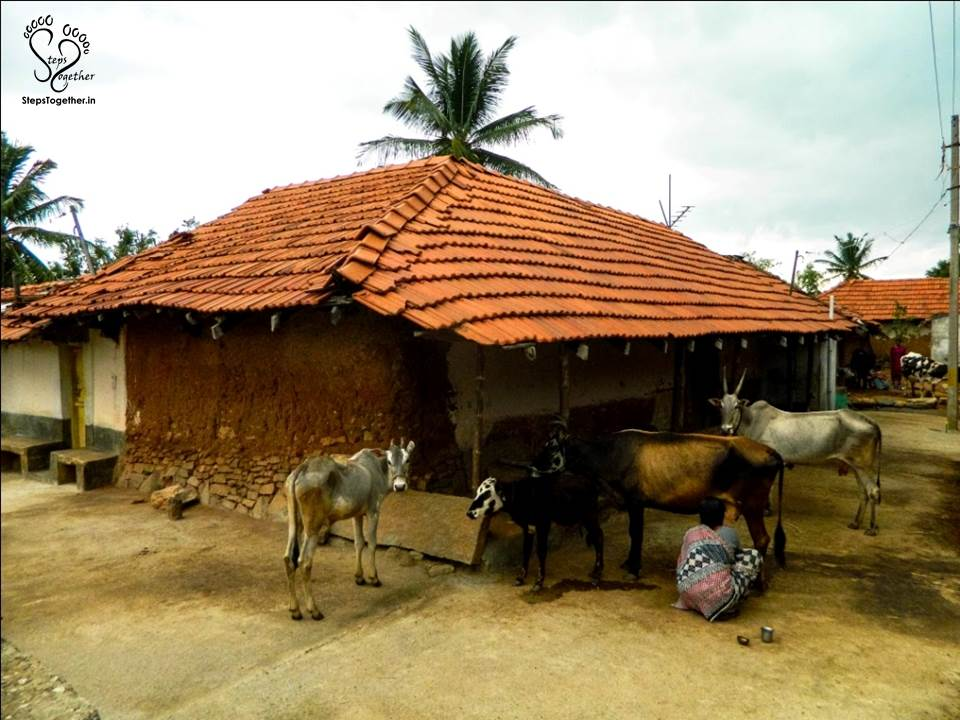 Chikkana Halli Village House