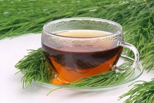 A cup of horsetail and green tea.