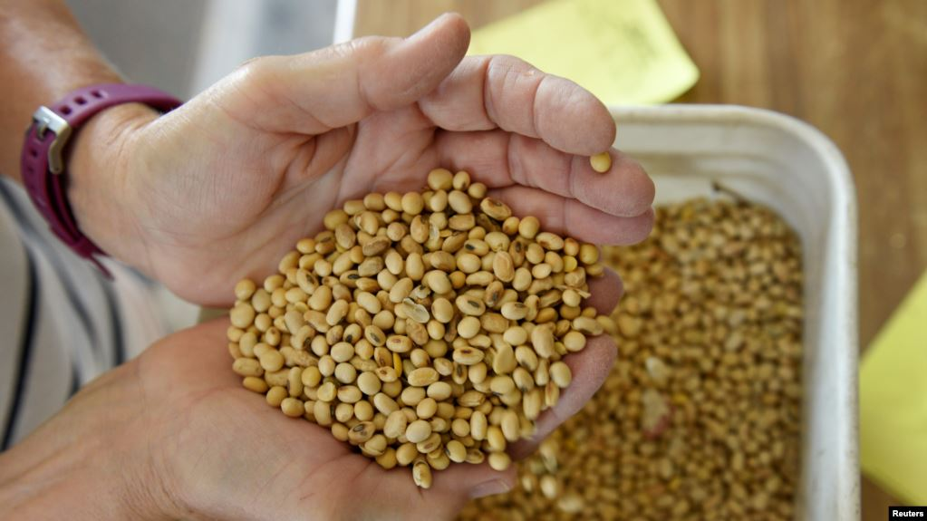 China añade algunos productos agrícolas a la exención de aranceles a EEUU