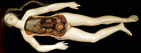 wellcome-exquisite-bodies