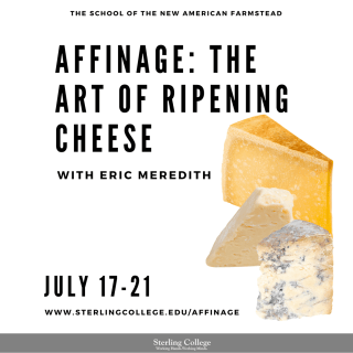 Affinage: The Art of Ripening Cheese