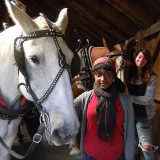 photo of students with horses