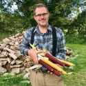 Dr. Tony VanWinkle presents several ears of his home-grown native corn. He is wearing khaki work pants, a blue plaid shirt and suspenders. He is standing in front of a woodpile.