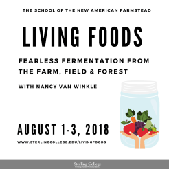 Living Food: Fermentation