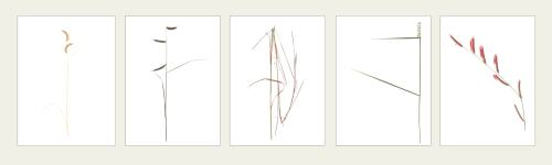 Artist pictures of grasses
