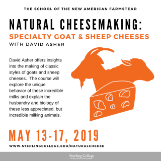 Flyer for Goat and Sheep Milk Cheesemaking course with David Asher