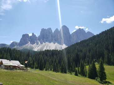a green high mountain pasture beneath a the jagged edges of the Dolomite mountains