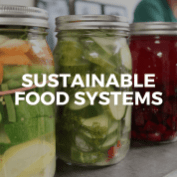 Button-Sustainable-Food-Systems-Sterling-College