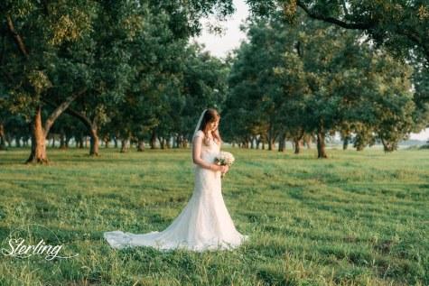 Taylor_bridals(int)-30