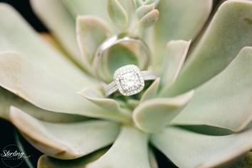 Emily_James_wedding17(int)-1120