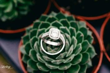Emily_James_wedding17(int)-1123