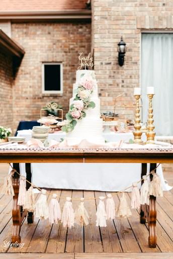 Emily_James_wedding17(int)-705