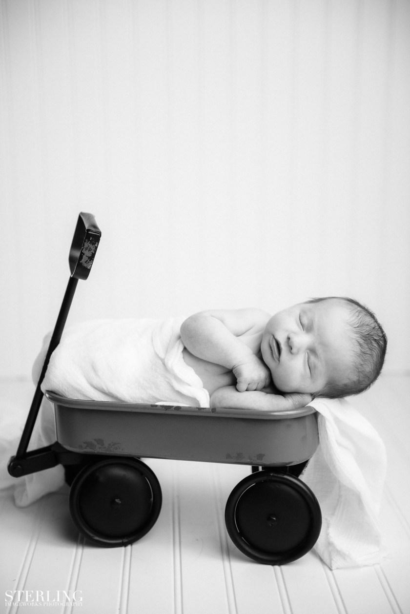 Law_newborn_(i)-39