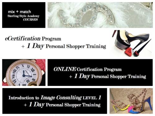 Mix + Match 1 Day Personal Shopper Training Program