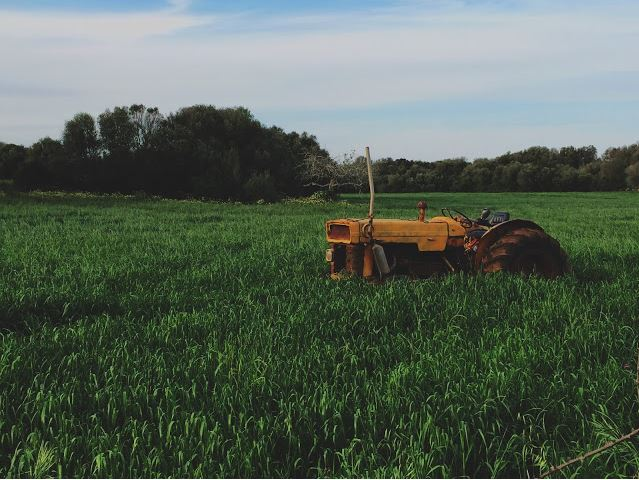 10 Questions Answered By A Farmer