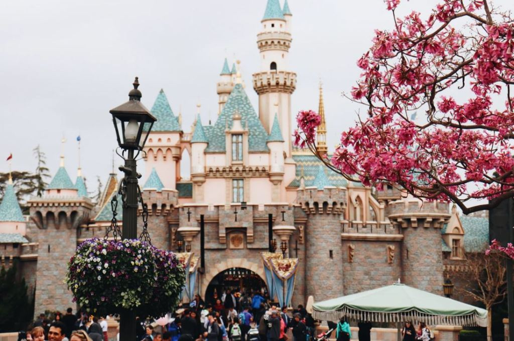 Disney Windows