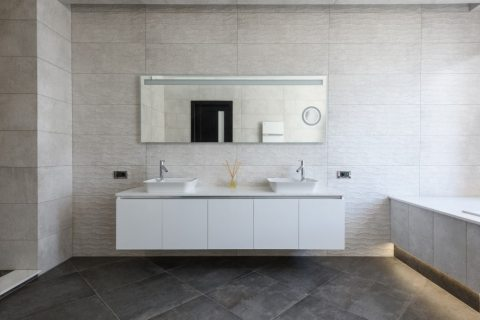 Why You Should Never Overlook the Mirror in a Bathroom Remodel