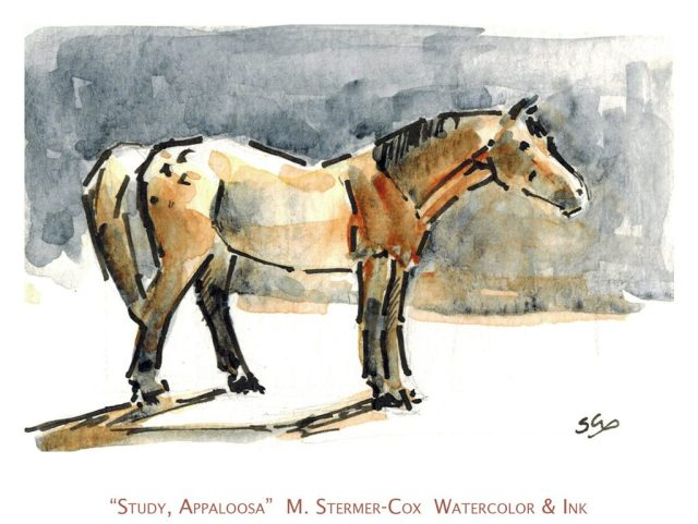 Watercolor & Ink Studies: Appaloosa