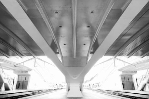 liége_guillemins_railway_station_15
