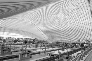 liége_guillemins_railway_station_18