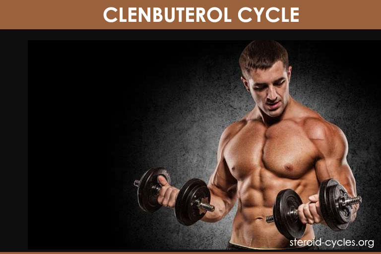 Clenbuterol Cycle: SHOCKING Transformation With Pics! [2019]